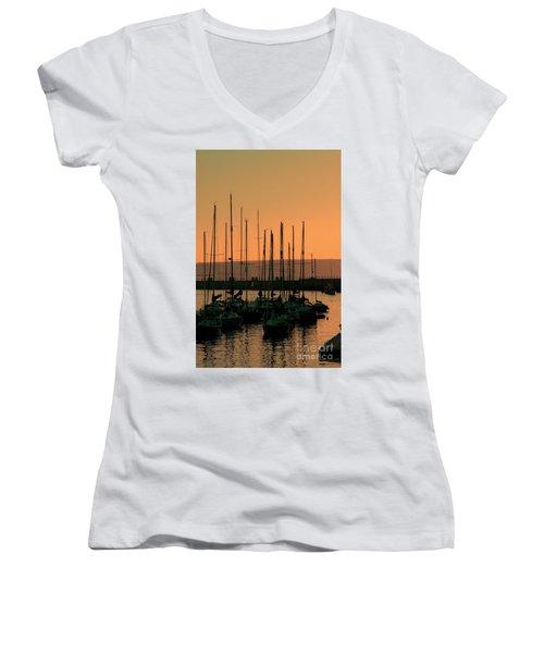 Morning Glory Women's V-Neck T-Shirt