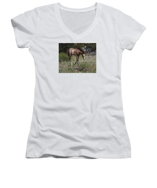 Morning Glory Women's V-Neck T-Shirt (Junior Cut) by Elizabeth Eldridge