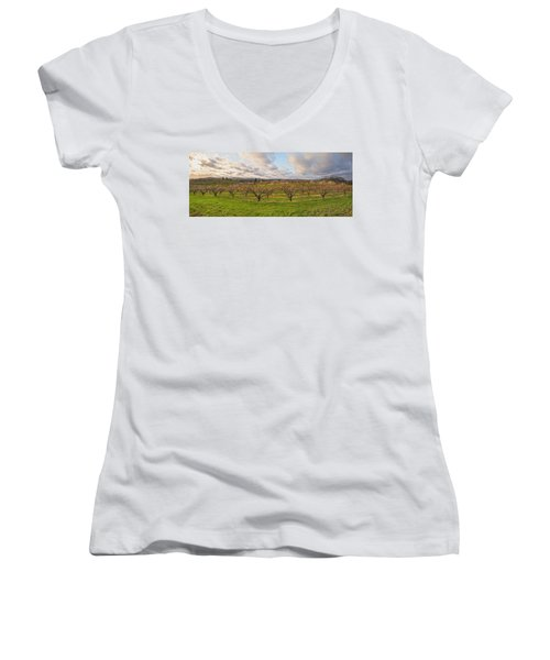 Morning Glory Orchards Women's V-Neck T-Shirt (Junior Cut) by Angelo Marcialis