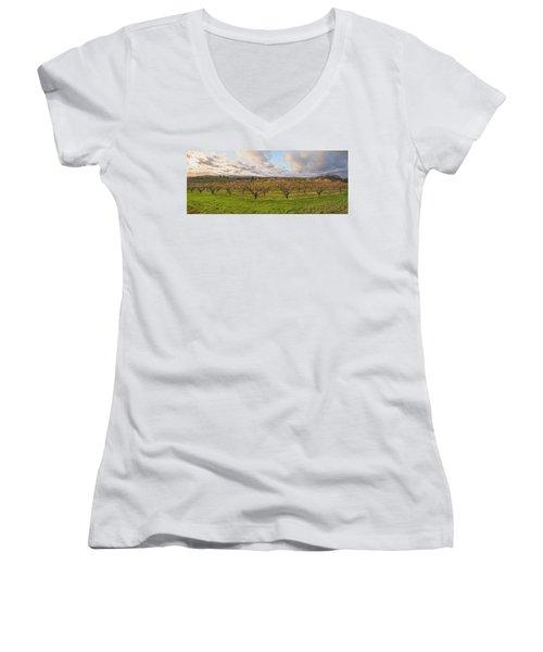 Morning Glory Orchards Women's V-Neck T-Shirt