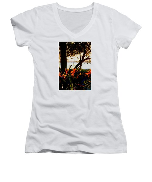 Women's V-Neck T-Shirt (Junior Cut) featuring the photograph Morning In Florida by Diane Merkle