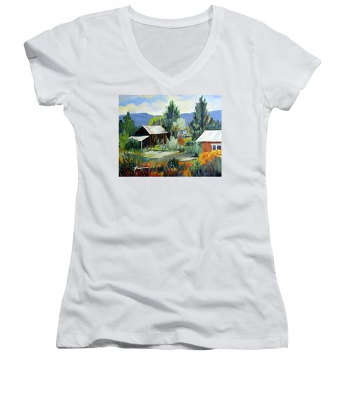 Mountain Settlement In New Mexico  Women's V-Neck (Athletic Fit)