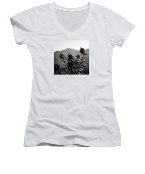 Mountains And Vegetation Women's V-Neck (Athletic Fit)
