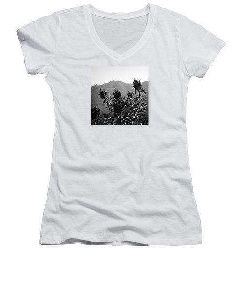 Mountains And Vegetation Women's V-Neck