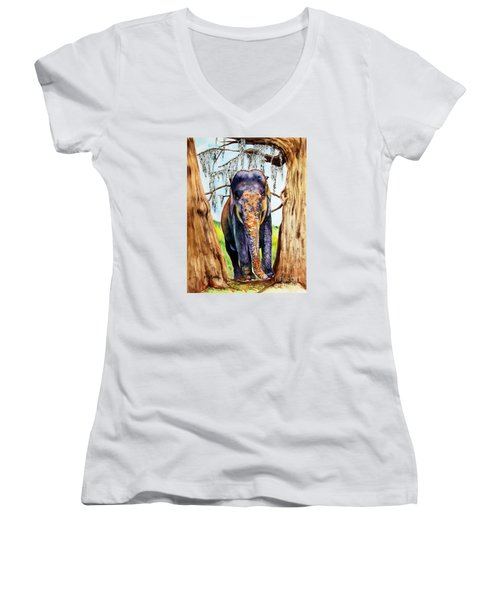 Women's V-Neck T-Shirt (Junior Cut) featuring the painting Mysore by Maria Barry