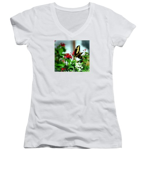 Nature's Beauty Women's V-Neck T-Shirt (Junior Cut) by Edgar Torres