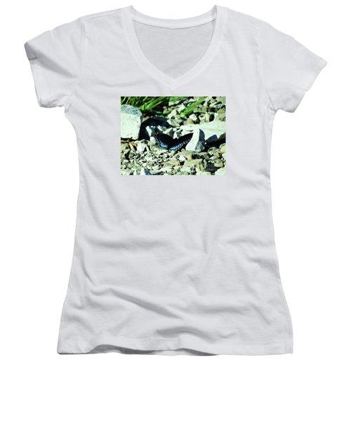 Women's V-Neck T-Shirt (Junior Cut) featuring the photograph Nature's Cloak Of Color by J L Zarek