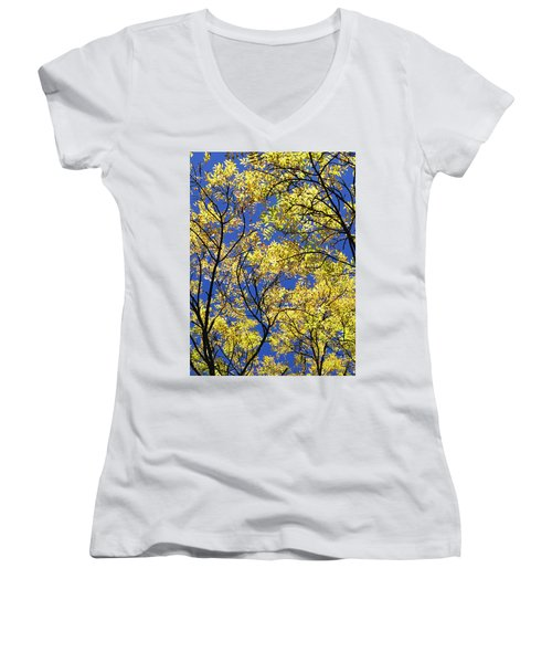 Women's V-Neck T-Shirt (Junior Cut) featuring the photograph Natures Magic - Original by Rebecca Harman