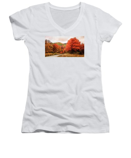 Nature's Palette Women's V-Neck T-Shirt