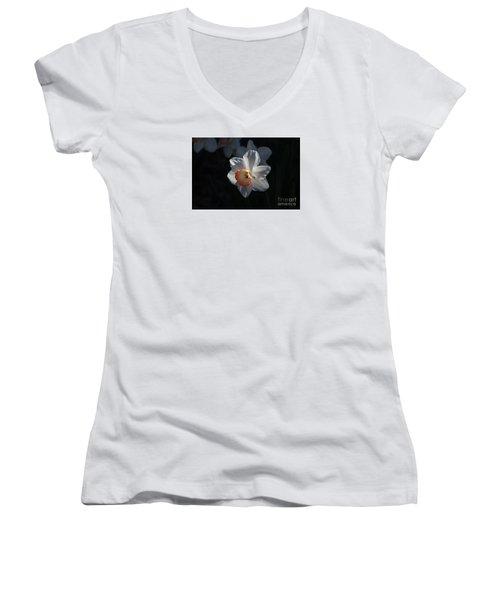 Nature's Reflection Women's V-Neck T-Shirt