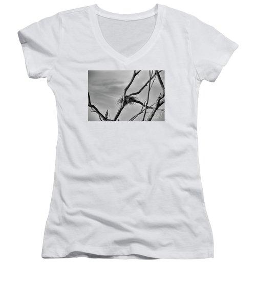 Nested Women's V-Neck T-Shirt (Junior Cut) by Douglas Barnard