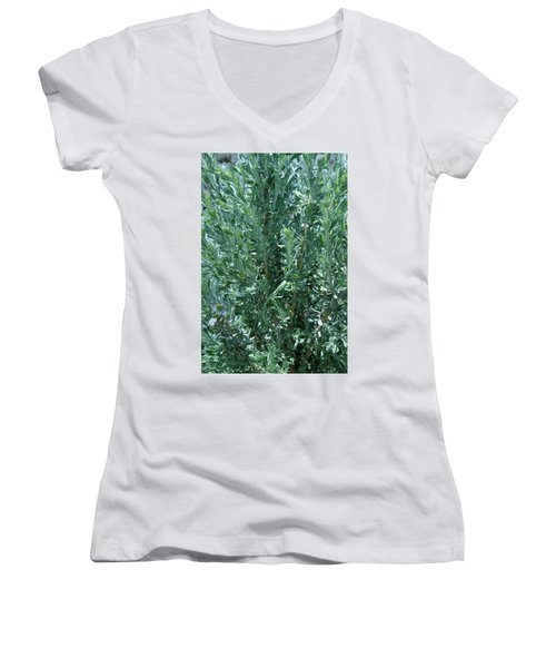 New Sage Women's V-Neck
