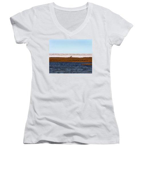 North Slope Women's V-Neck T-Shirt (Junior Cut) by Anthony Jones