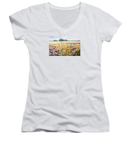 Nygren Wetlands Women's V-Neck T-Shirt