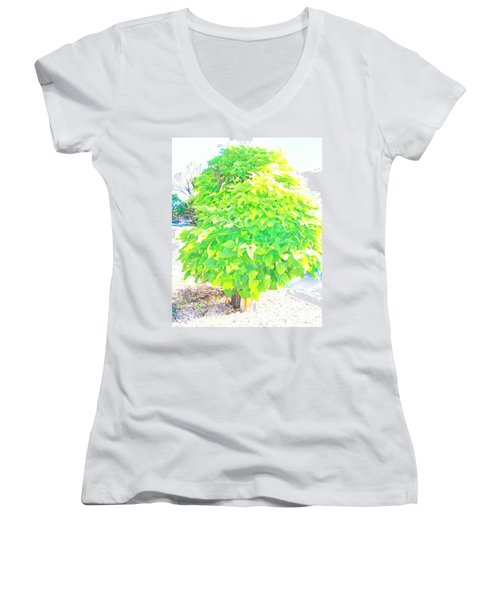 Women's V-Neck T-Shirt (Junior Cut) featuring the photograph Obese American Tree by Lenore Senior