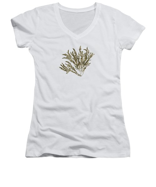 Women's V-Neck T-Shirt (Junior Cut) featuring the mixed media Ocean Seaweed Plant Art Ptilota Sericea Square by Christina Rollo