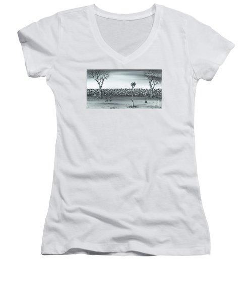 Odd Couple. Women's V-Neck T-Shirt (Junior Cut) by Kenneth Clarke