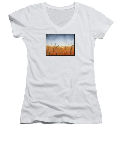 Of Grass And Seed Women's V-Neck T-Shirt (Junior Cut) by Carolyn Doe
