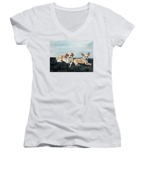 Oil Painting Women's V-Neck T-Shirt