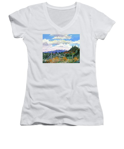 Old North Fence-in Colorado Women's V-Neck