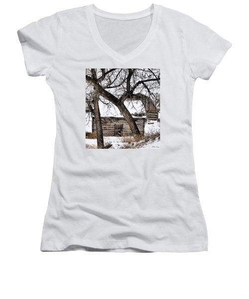 Old Ulm Barn Women's V-Neck T-Shirt (Junior Cut) by Susan Kinney