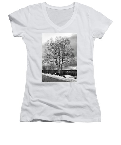 Old White Birch Women's V-Neck T-Shirt (Junior Cut) by Betty Pauwels