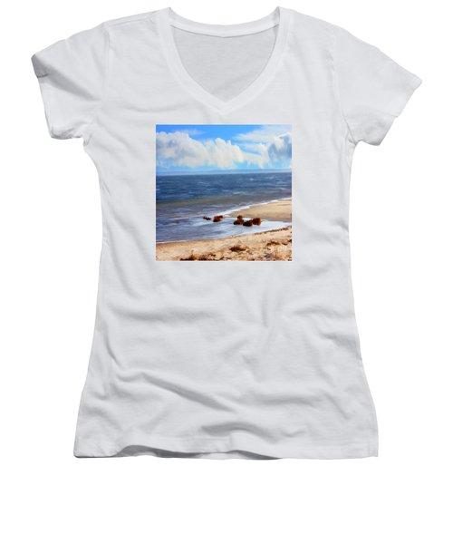 On A Clear Day Women's V-Neck T-Shirt (Junior Cut) by Judy Palkimas