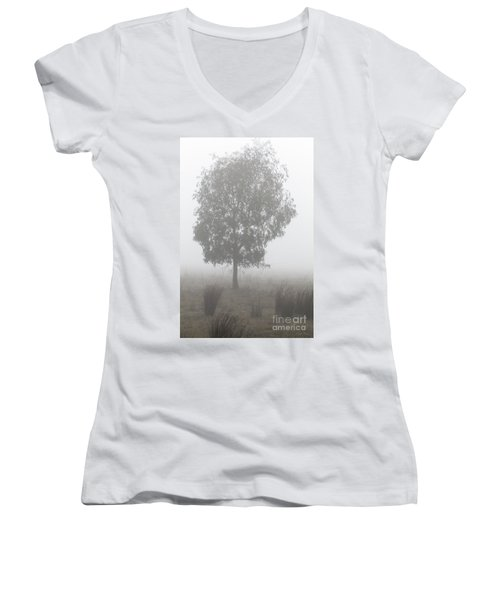 Women's V-Neck T-Shirt featuring the photograph On A Winter's Morning by Linda Lees