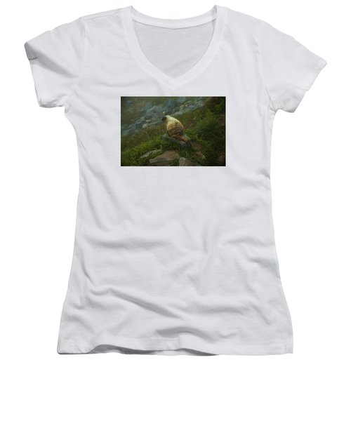 On Lookout Women's V-Neck