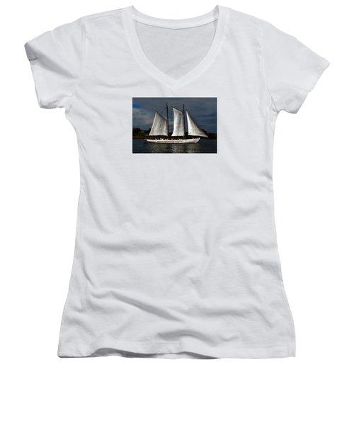 The A. J. Meerwald Women's V-Neck T-Shirt (Junior Cut) by Richard Ortolano