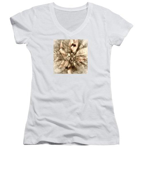 Once Upon Grandmom's Poinsettia Women's V-Neck T-Shirt