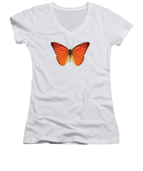 Orange Butterfly Species Appias Nero Neronis  Women's V-Neck (Athletic Fit)