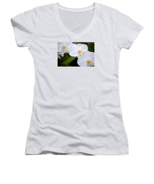 Orchid Flow Women's V-Neck T-Shirt (Junior Cut) by Deborah  Crew-Johnson