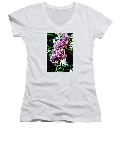 Orchid - Pla236 Women's V-Neck T-Shirt (Junior Cut) by G L Sarti