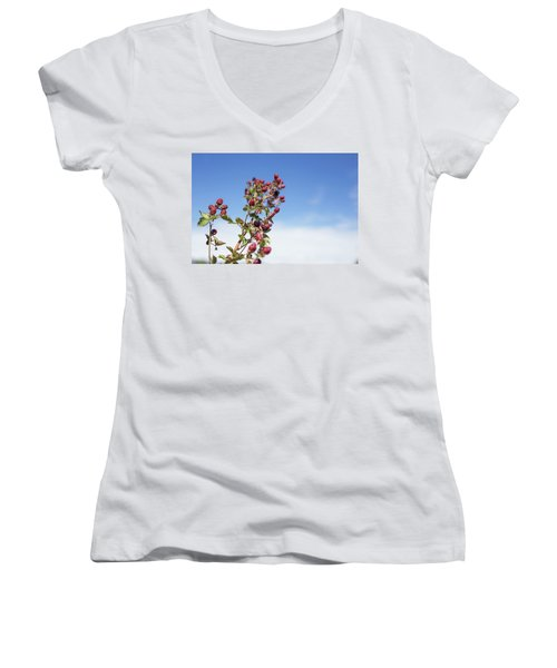 Organic Handpicked Home Orchard Raspberries,blackberries From Bu Women's V-Neck T-Shirt