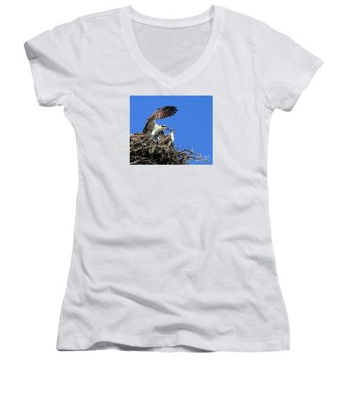 Osprey Chicks Ready To Fledge Women's V-Neck T-Shirt