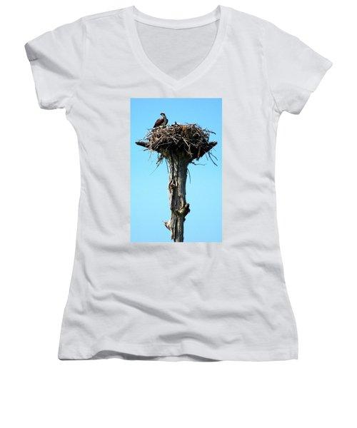 Osprey Point Women's V-Neck T-Shirt (Junior Cut) by Karen Wiles
