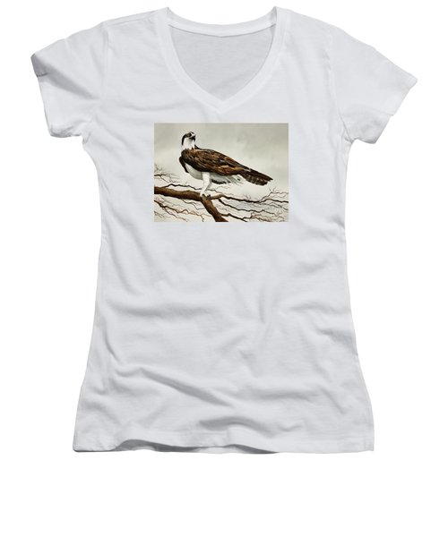 Osprey Sea Hawk Women's V-Neck T-Shirt (Junior Cut) by James Williamson