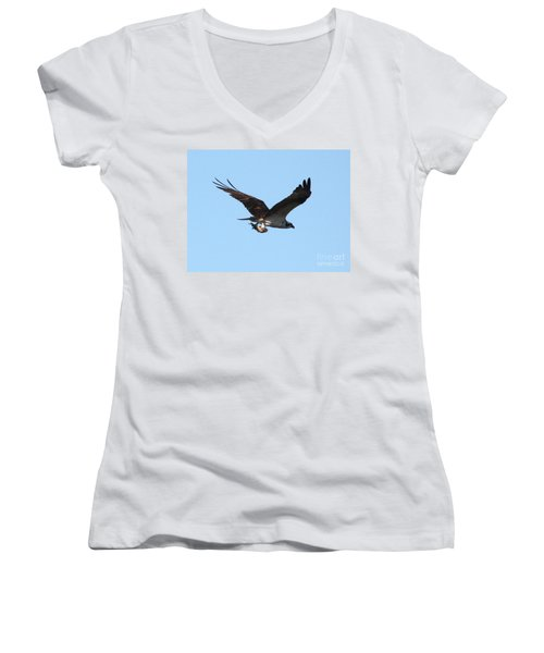 Osprey With Fish Women's V-Neck T-Shirt (Junior Cut) by Carol Groenen