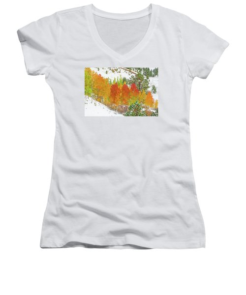 Our Winter Begins Around Mid October.  Women's V-Neck T-Shirt