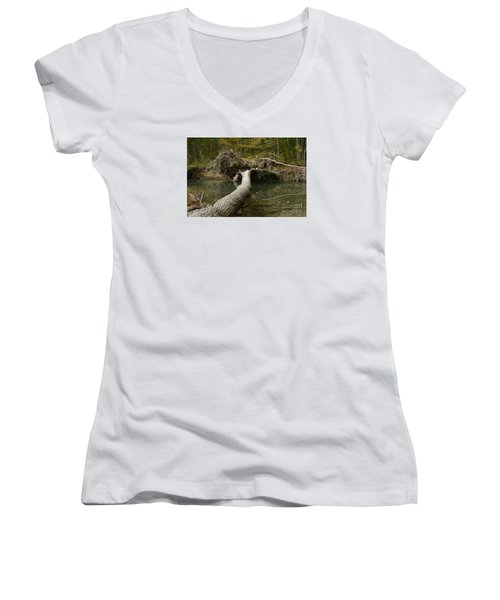 Women's V-Neck T-Shirt (Junior Cut) featuring the photograph Over On Clover by Randy Bodkins
