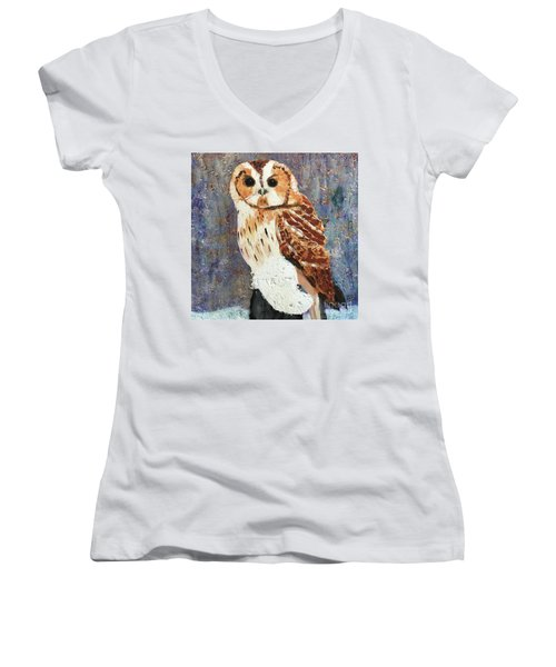 Owl On Snow Women's V-Neck T-Shirt