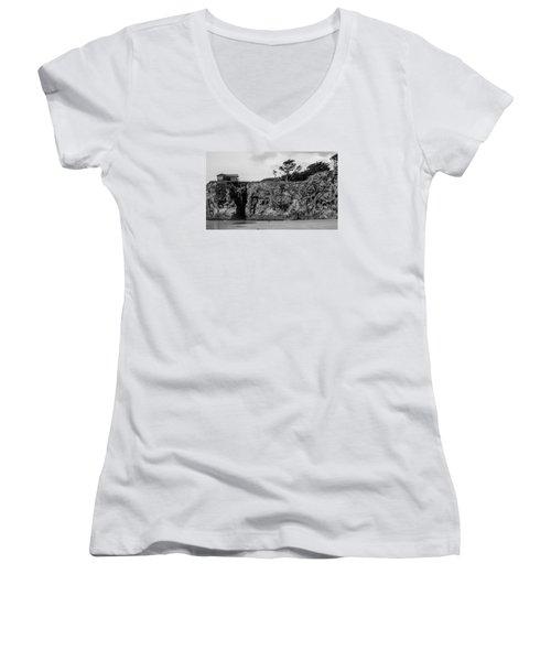 p Women's V-Neck T-Shirt