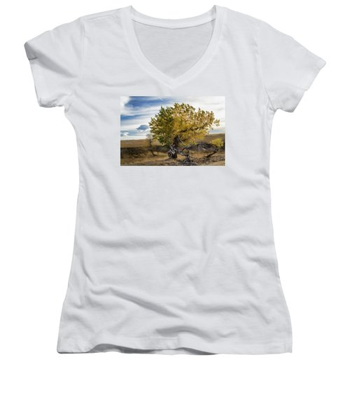 Painted By Nature Women's V-Neck T-Shirt (Junior Cut) by Alana Thrower