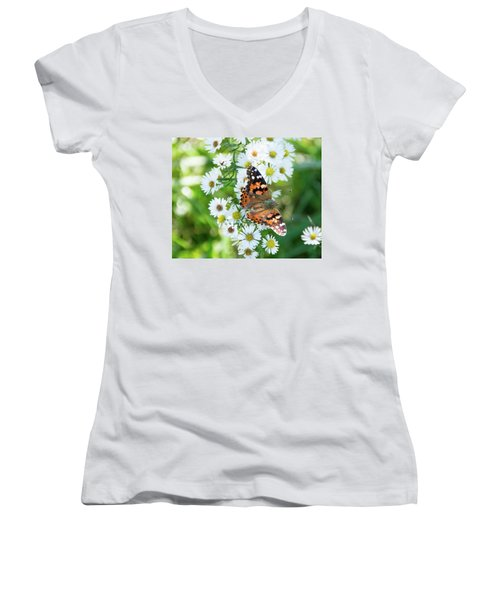 Painted Lady Butterfly Women's V-Neck