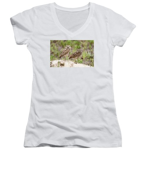 Pair Of Burrowing Owls Women's V-Neck T-Shirt