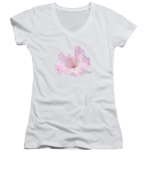 Pale Pink Rhododendron On Transparent Background Women's V-Neck