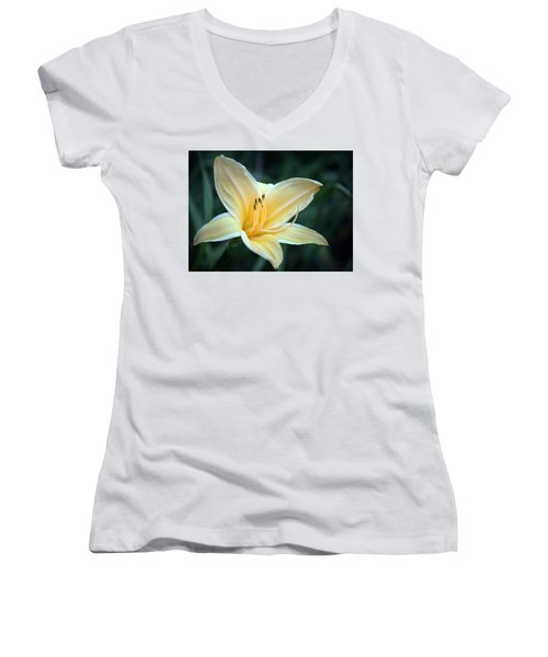 Pale Yellow Day Lily Women's V-Neck T-Shirt