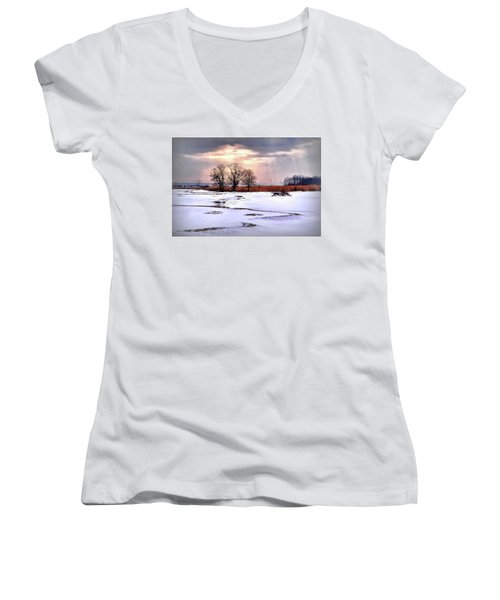 Par For Winter's Course Women's V-Neck T-Shirt (Junior Cut) by Diana Angstadt