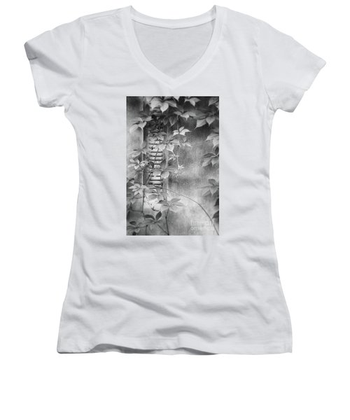 Parallel Botany #0810 Women's V-Neck T-Shirt